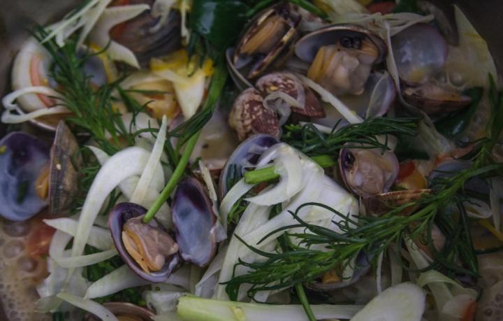 clams- IMG_7585