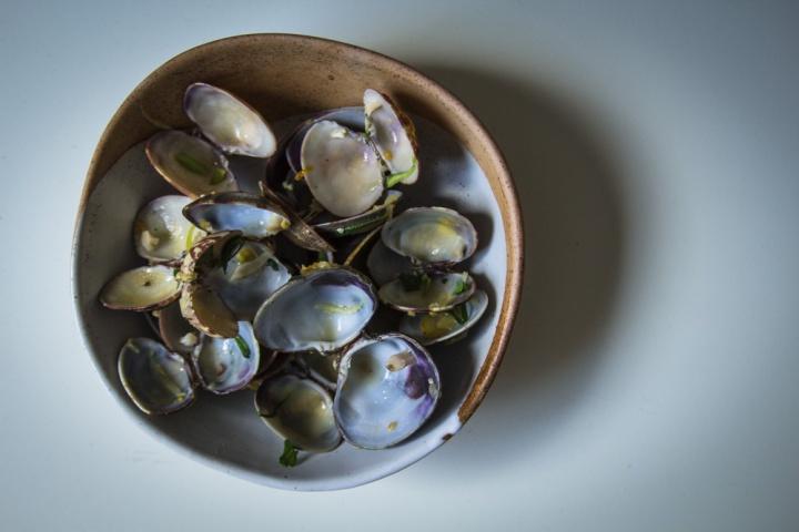 clams- IMG_7629
