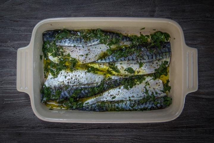 mackerel- IMG_4551