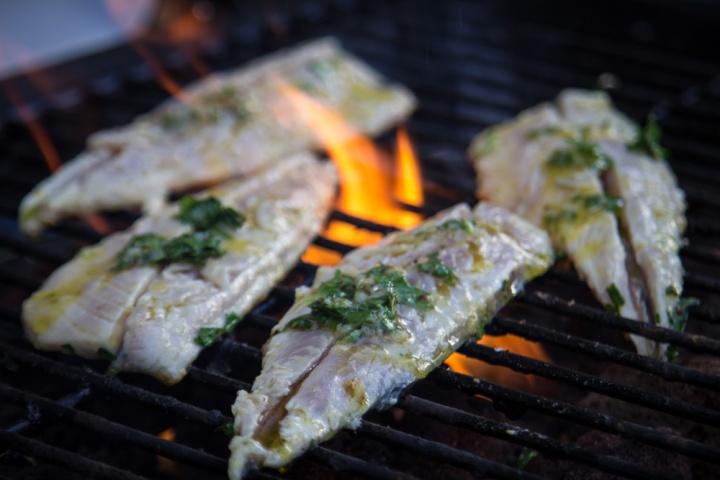 mackerel- IMG_4645-2